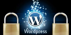 wordpress siteyi güvenli yapma